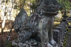 Japon2020-319