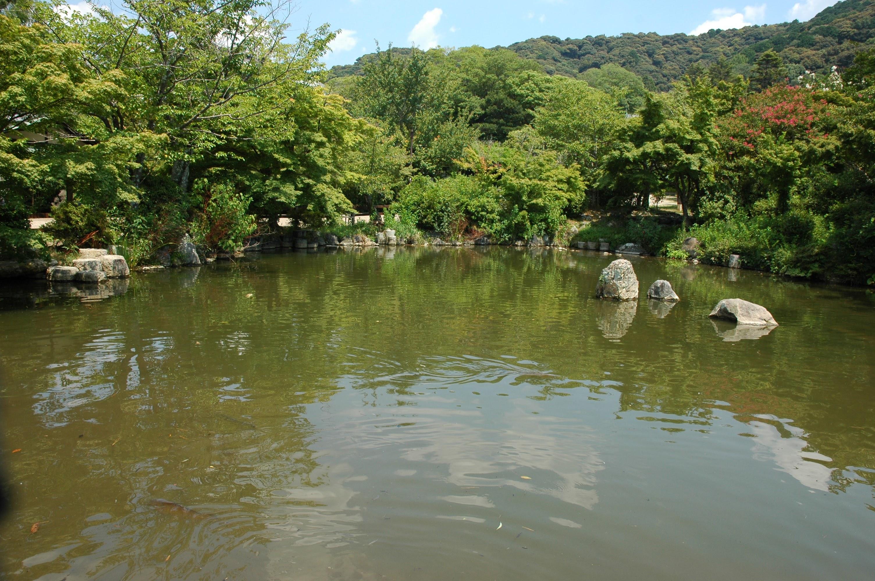 Kyoto park lake