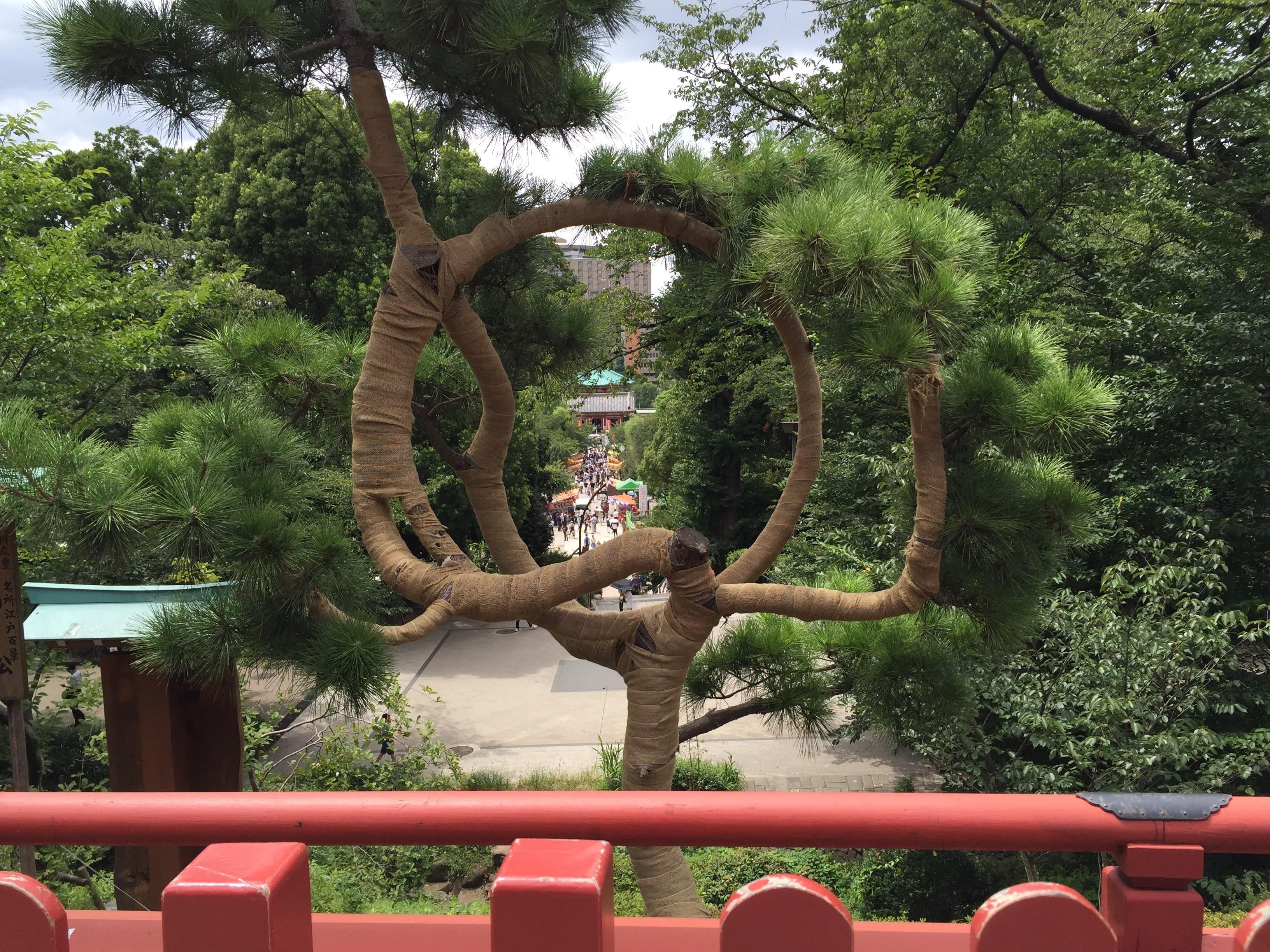 Au parc d'Ueno