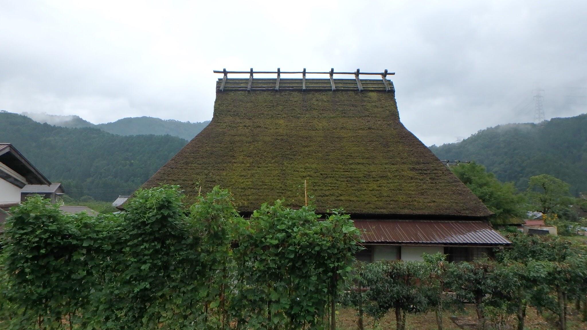 Miyama traditional roof