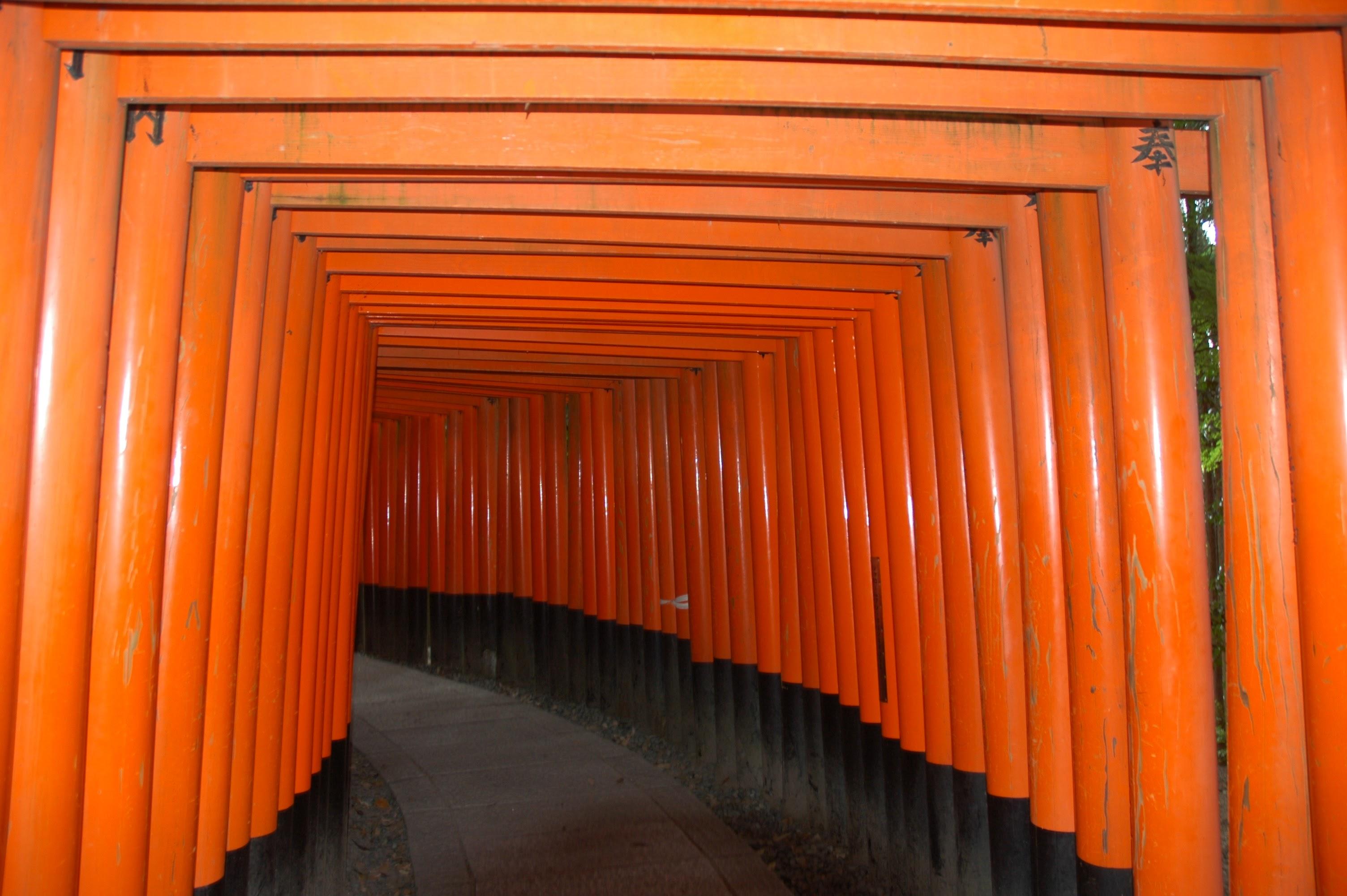 Torii alley